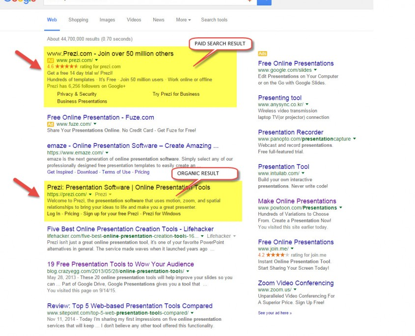 Google-Organic-Paid-Search-Results