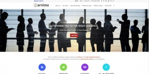 Arnima Design Redesigned Website from 2016